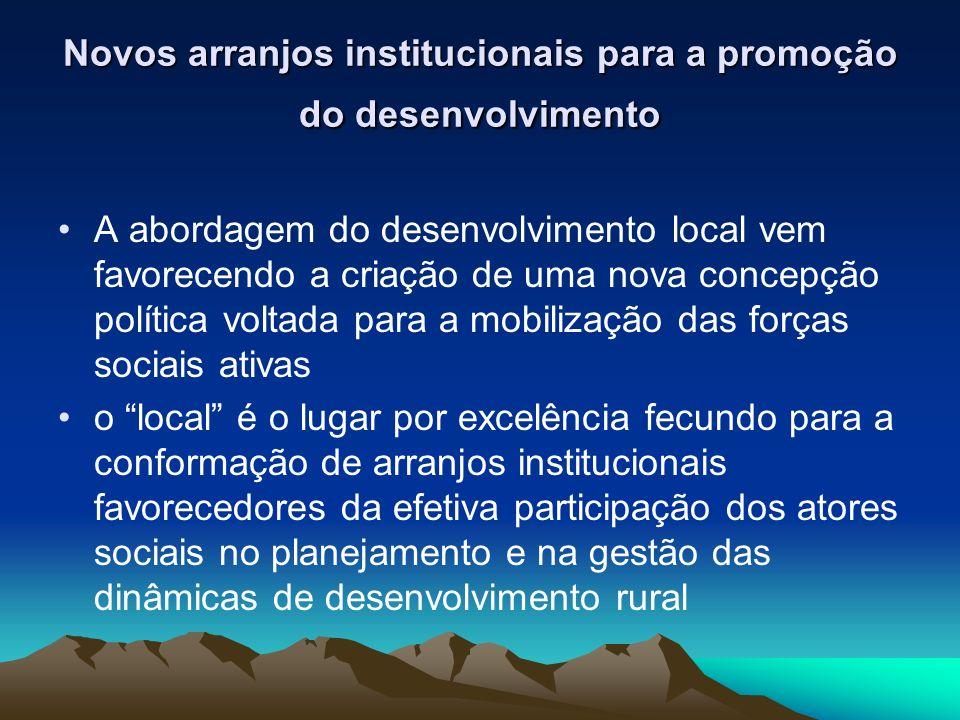 Novos arranjos institucionais para a promoção do desenvolvimento