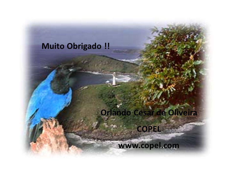 Orlando Cesar de Oliveira