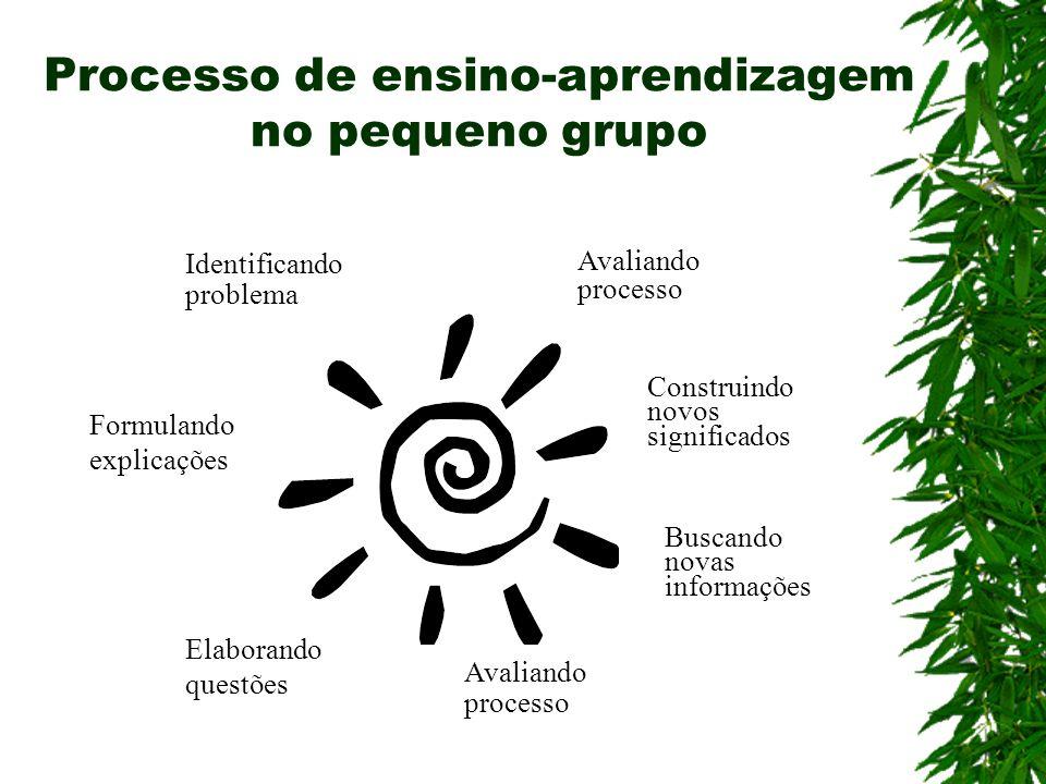 Processo de ensino-aprendizagem no pequeno grupo
