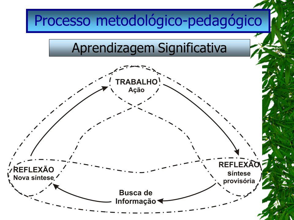 Processo metodológico-pedagógico