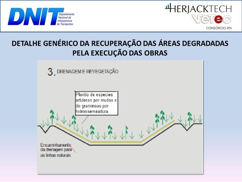 DETALHE GENÉRICO DA RECUPERAÇÃO DAS ÁREAS DEGRADADAS PELA EXECUÇÃO DAS OBRAS