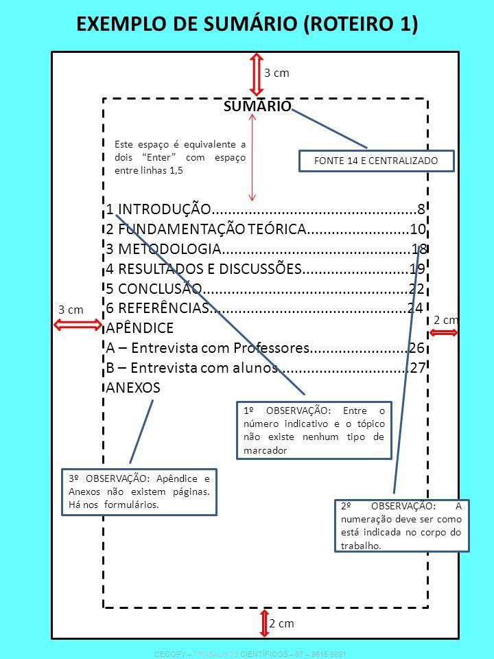 EXEMPLO DE SUMÁRIO (ROTEIRO 1)