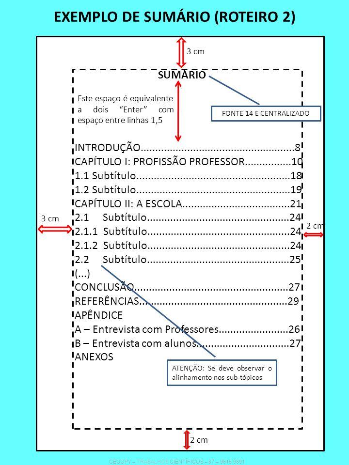 EXEMPLO DE SUMÁRIO (ROTEIRO 2)