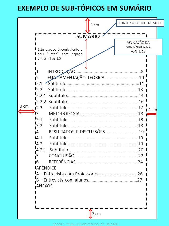 EXEMPLO DE SUB-TÓPICOS EM SUMÁRIO