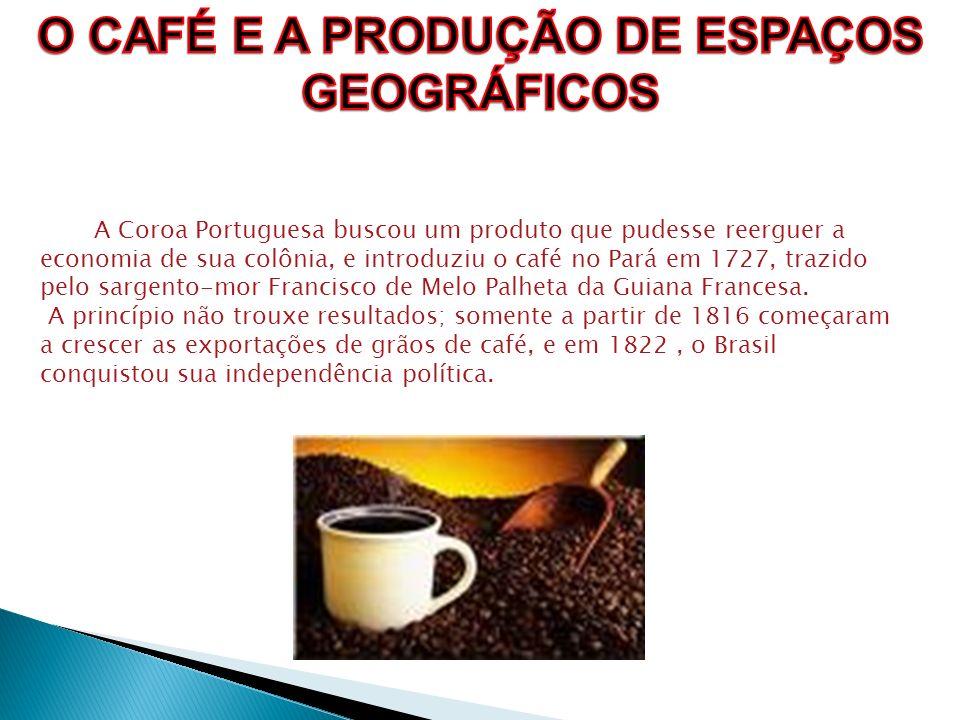 O CAFÉ E A PRODUÇÃO DE ESPAÇOS
