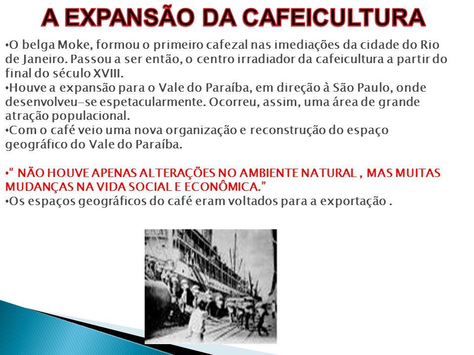 A EXPANSÃO DA CAFEICULTURA