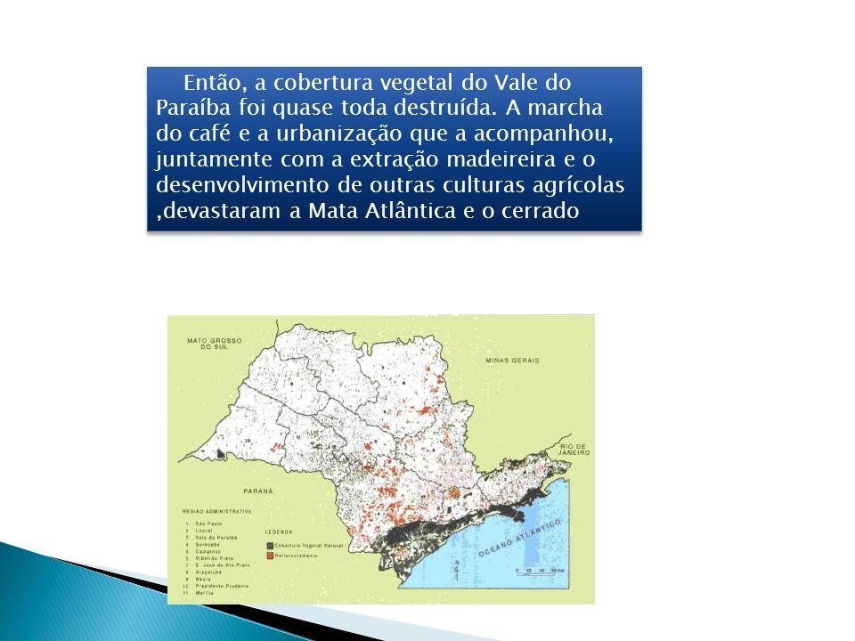 Então, a cobertura vegetal do Vale do Paraíba foi quase toda destruída