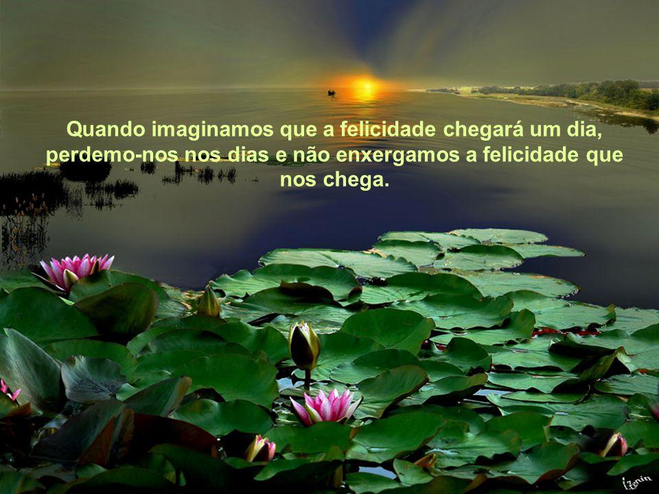 Texto Matriz Quando imaginamos que a felicidade chegará um dia, perdemo-nos nos dias e não enxergamos a felicidade que nos chega.