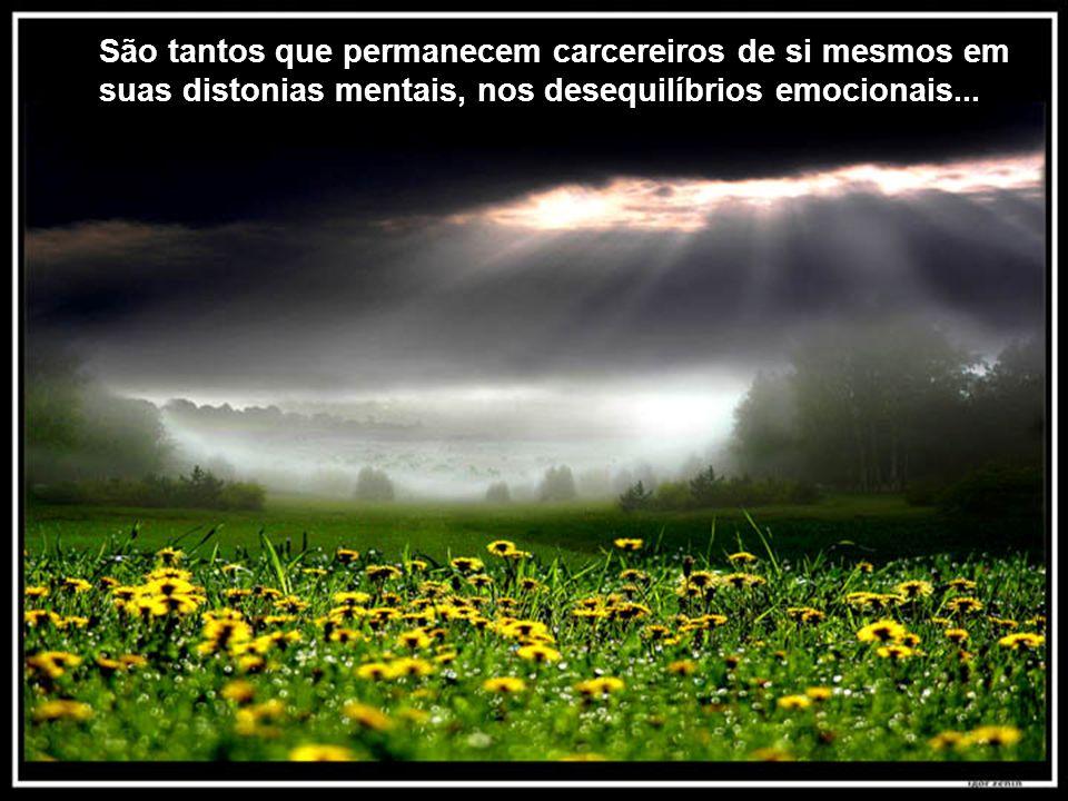 Texto Matriz São tantos que permanecem carcereiros de si mesmos em suas distonias mentais, nos desequilíbrios emocionais...
