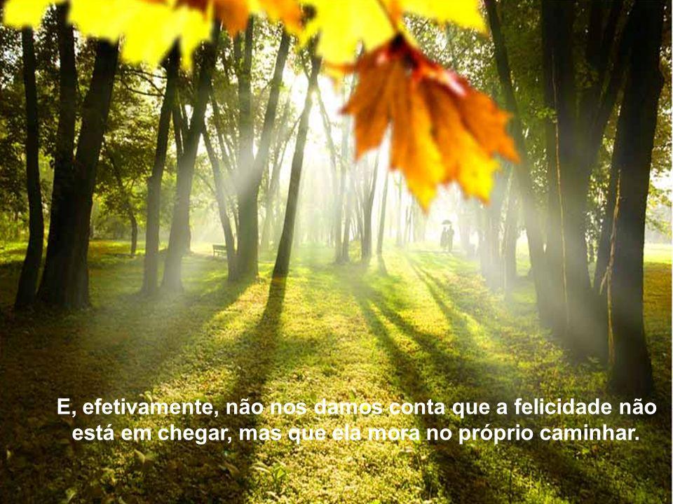 Texto Matriz E, efetivamente, não nos damos conta que a felicidade não está em chegar, mas que ela mora no próprio caminhar.