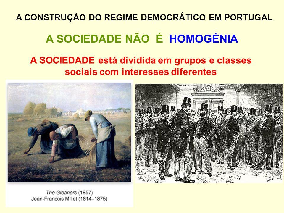 A SOCIEDADE NÃO É HOMOGÉNIA