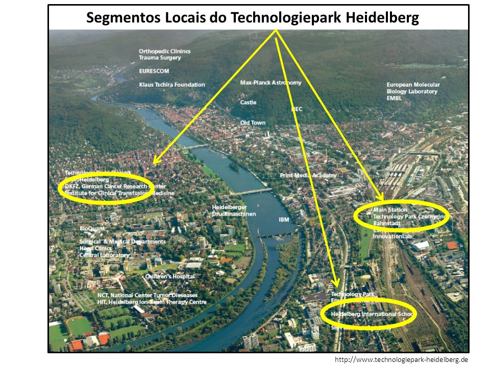 Segmentos Locais do Technologiepark Heidelberg
