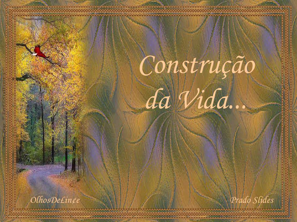 Construção da Vida... OlhosDe£in¢e Prado Slides