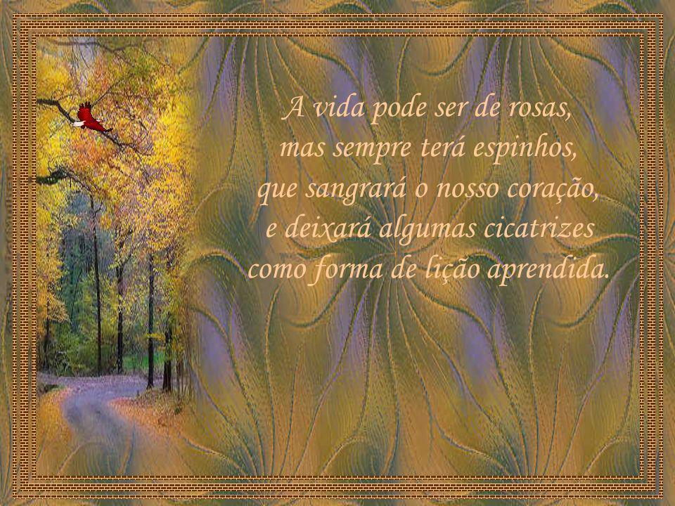 A vida pode ser de rosas, mas sempre terá espinhos, que sangrará o nosso coração, e deixará algumas cicatrizes como forma de lição aprendida.