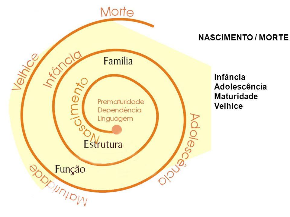 NASCIMENTO / MORTE Infância Adolescência Maturidade Velhice