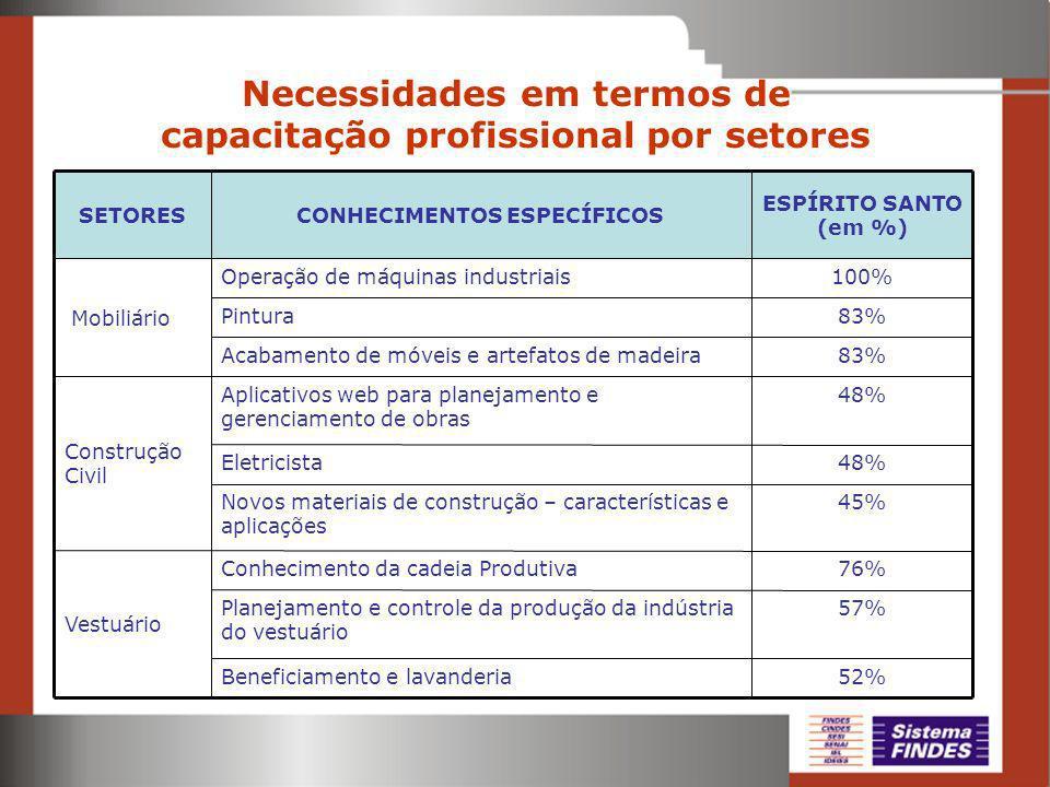 Necessidades em termos de capacitação profissional por setores