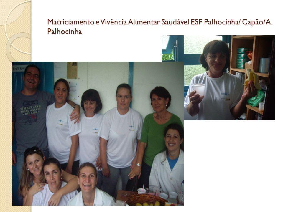 Matriciamento e Vivência Alimentar Saudável ESF Palhocinha/ Capão/A