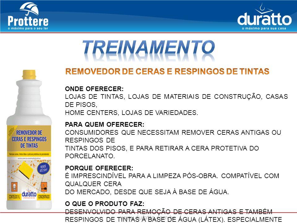 TREINAMENTO REMOVEDOR DE CERAS E RESPINGOS DE TINTAS ONDE OFERECER: