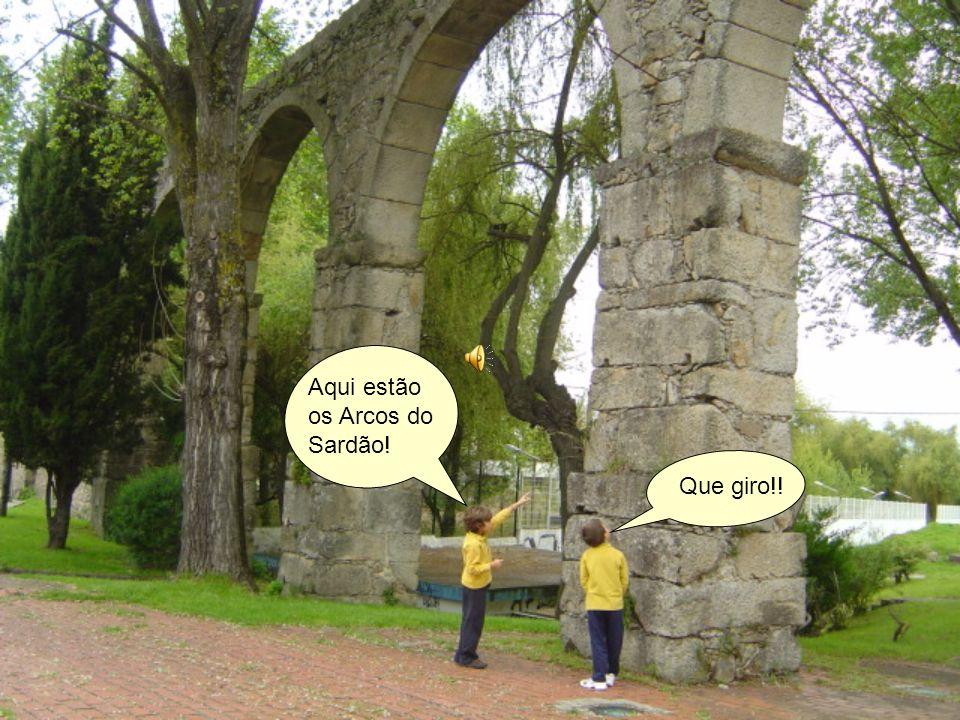 Aqui estão os Arcos do Sardão!