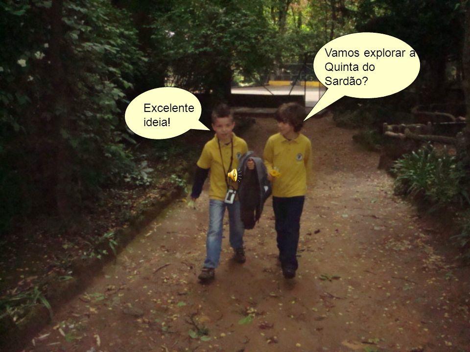 Vamos explorar a Quinta do Sardão