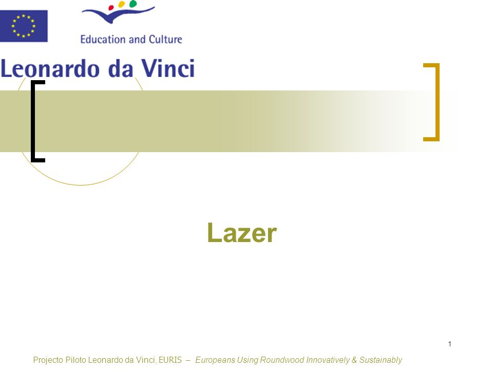 Lazer Projecto Piloto Leonardo da Vinci, EURIS – Europeans Using Roundwood Innovatively & Sustainably.