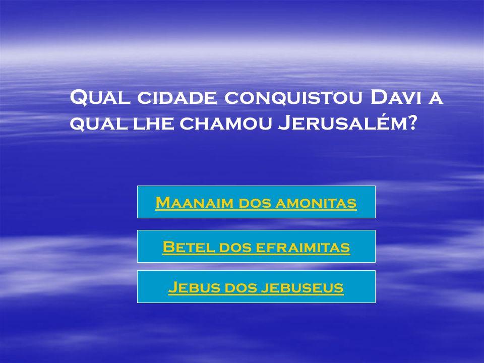 QUAL cidade conquistou Davi a qual lhe chamou Jerusalém