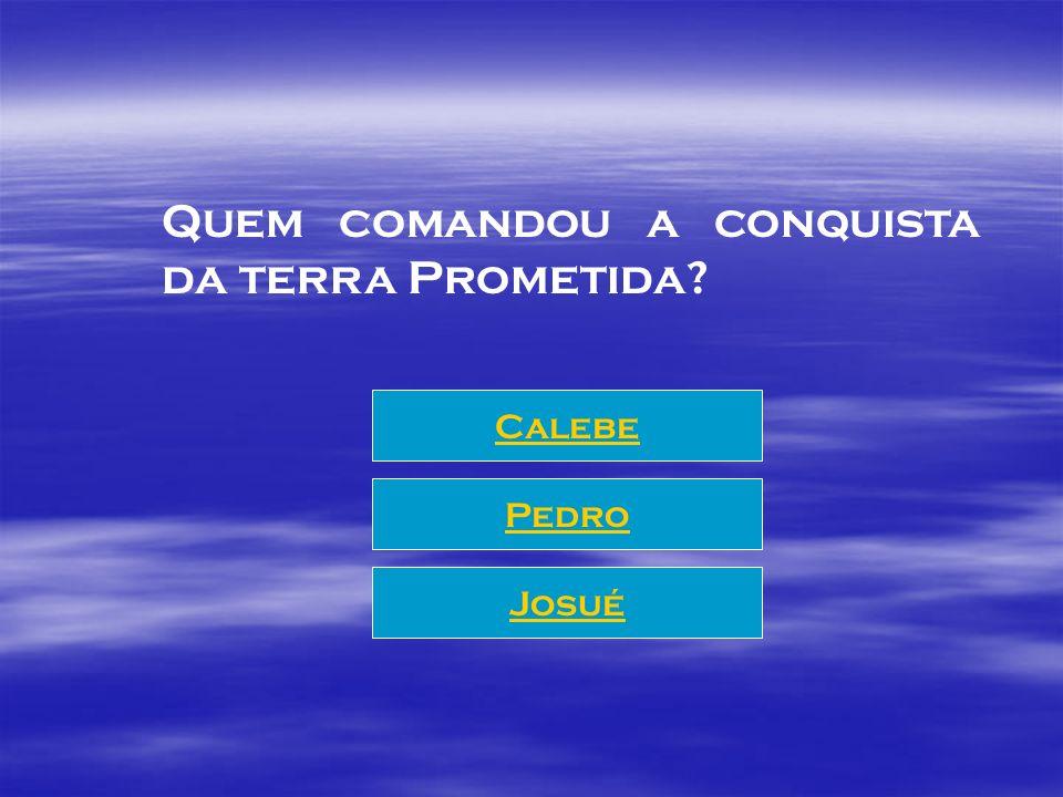 Quem comandou a conquista da terra Prometida