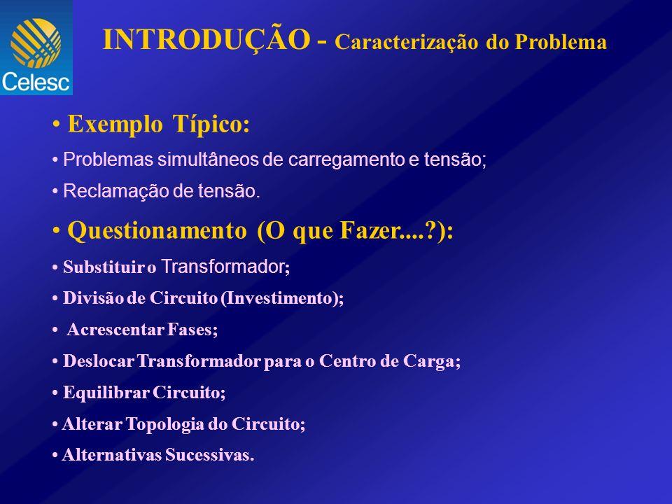 INTRODUÇÃO - Caracterização do Problema