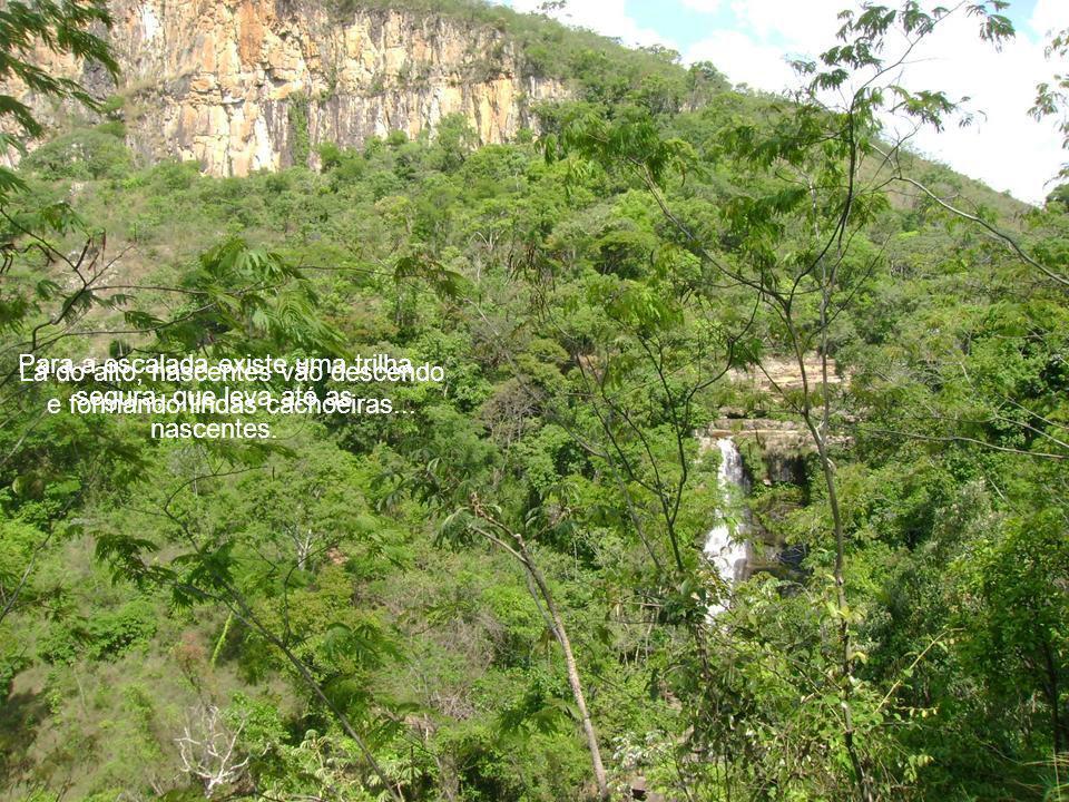 Para a escalada existe uma trilha segura, que leva até as nascentes.