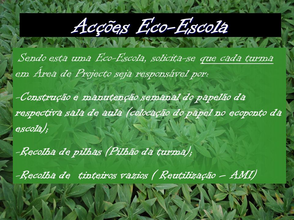 Acções Eco-Escola Sendo esta uma Eco-Escola, solicita-se que cada turma em Área de Projecto seja responsável por: