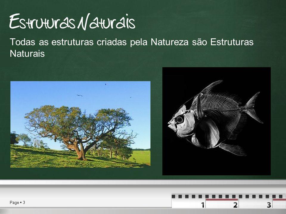 Estruturas Naturais Todas as estruturas criadas pela Natureza são Estruturas Naturais