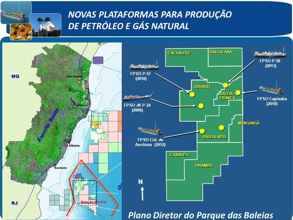 NOVAS PLATAFORMAS PARA PRODUÇÃO DE PETRÓLEO E GÁS NATURAL