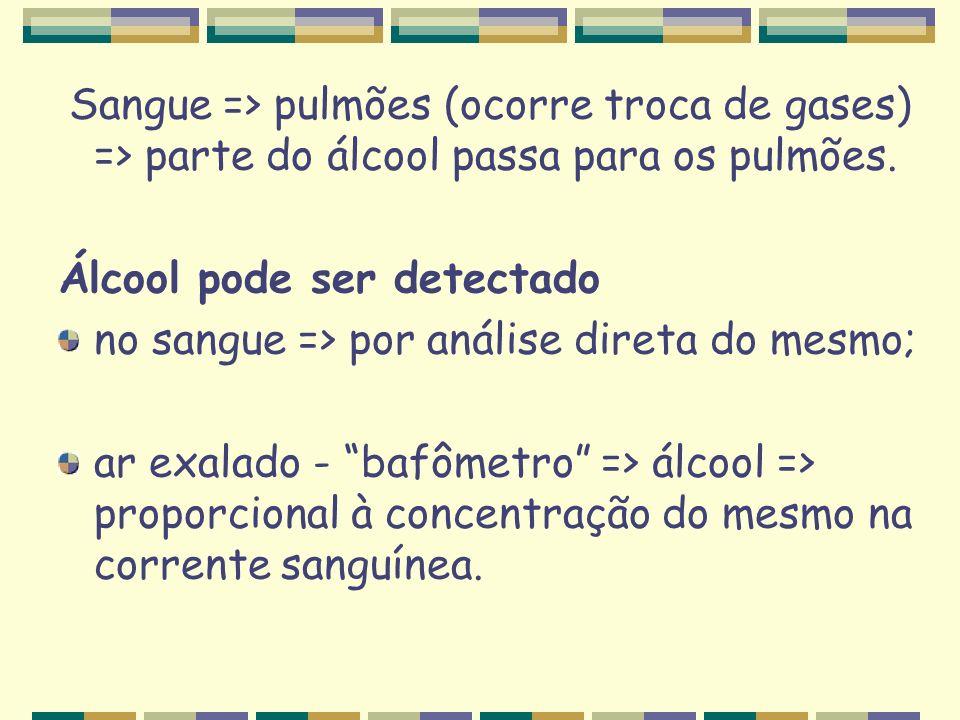 Sangue => pulmões (ocorre troca de gases) => parte do álcool passa para os pulmões.