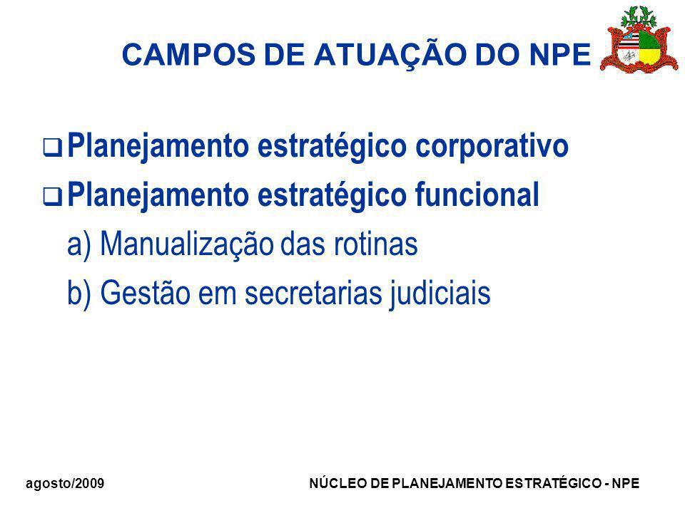 CAMPOS DE ATUAÇÃO DO NPE