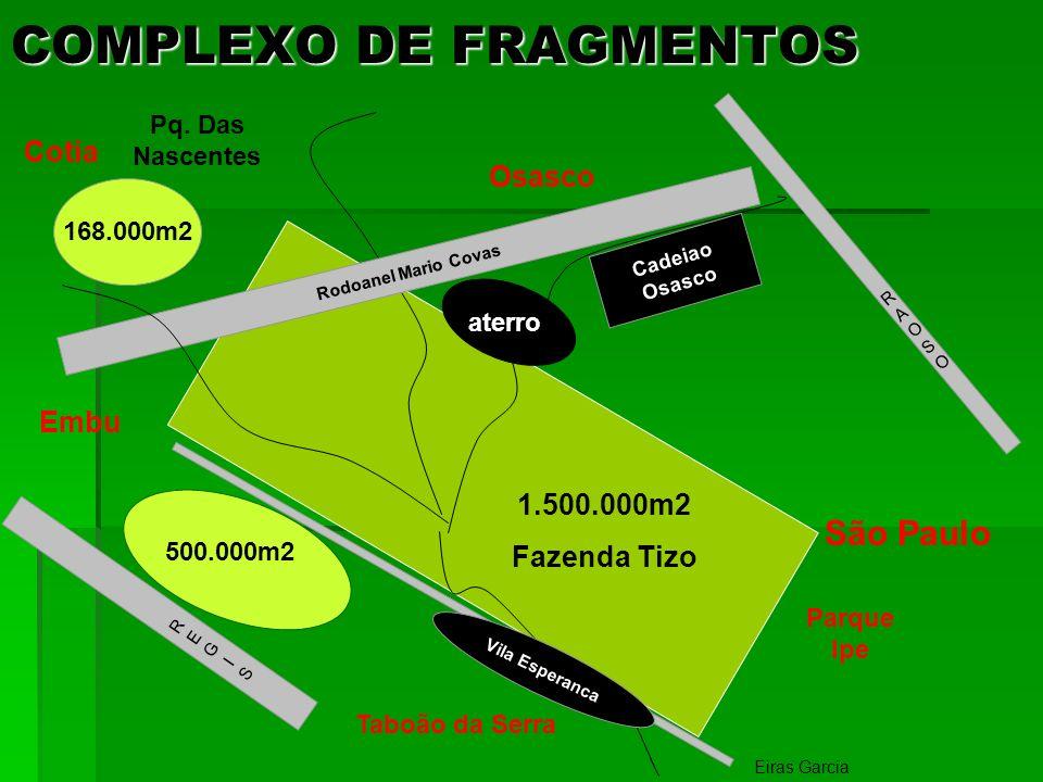 COMPLEXO DE FRAGMENTOS