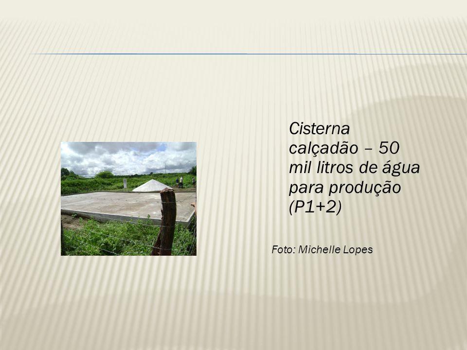 Cisterna calçadão – 50 mil litros de água para produção (P1+2)