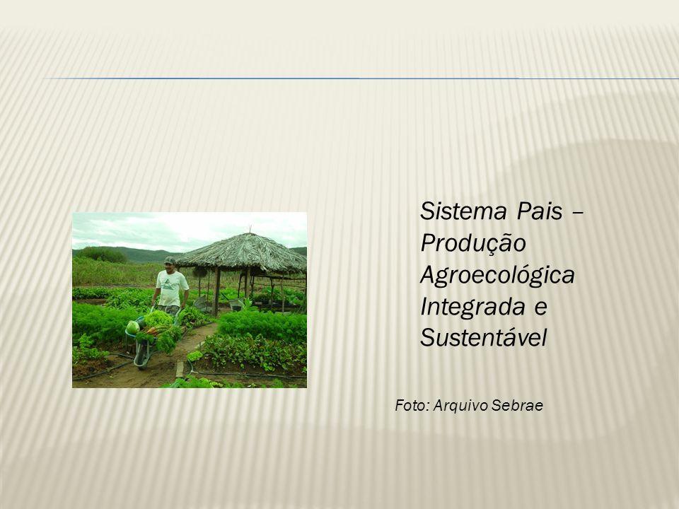 Sistema Pais – Produção Agroecológica Integrada e Sustentável