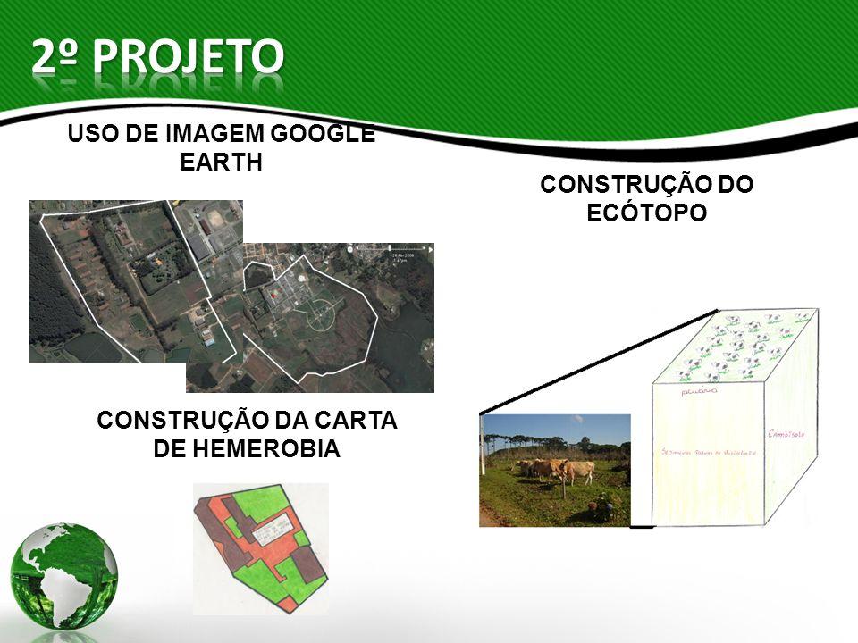 USO DE IMAGEM GOOGLE EARTH CONSTRUÇÃO DA CARTA DE HEMEROBIA