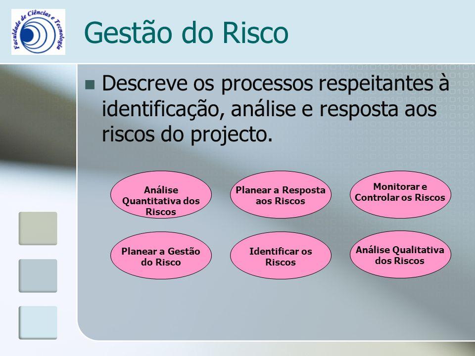 Gestão do Risco Descreve os processos respeitantes à identificação, análise e resposta aos riscos do projecto.