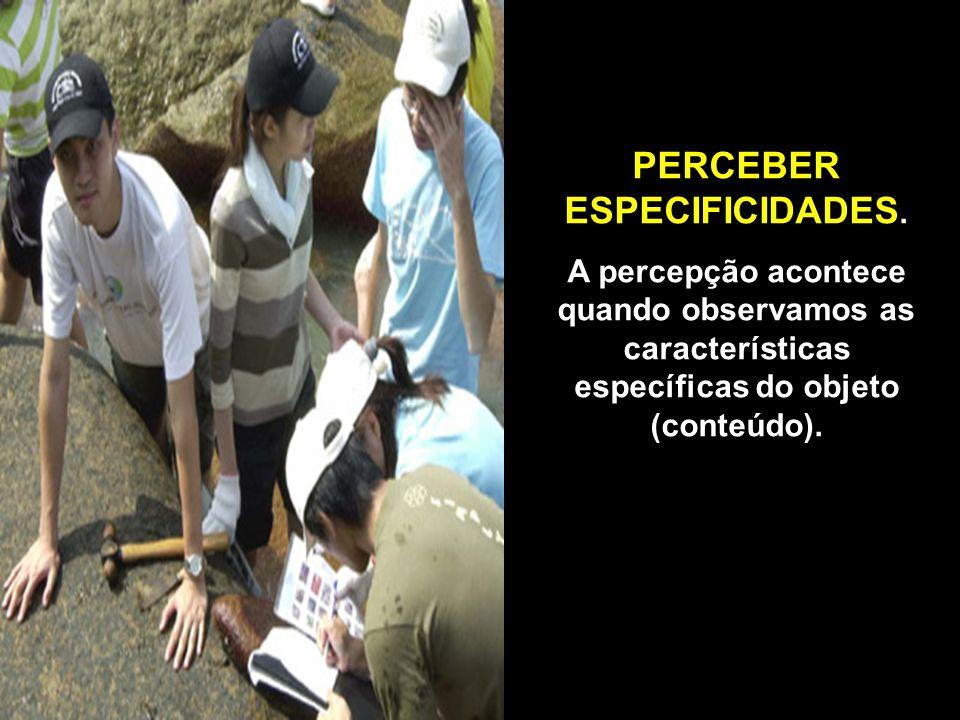 PERCEBER ESPECIFICIDADES.