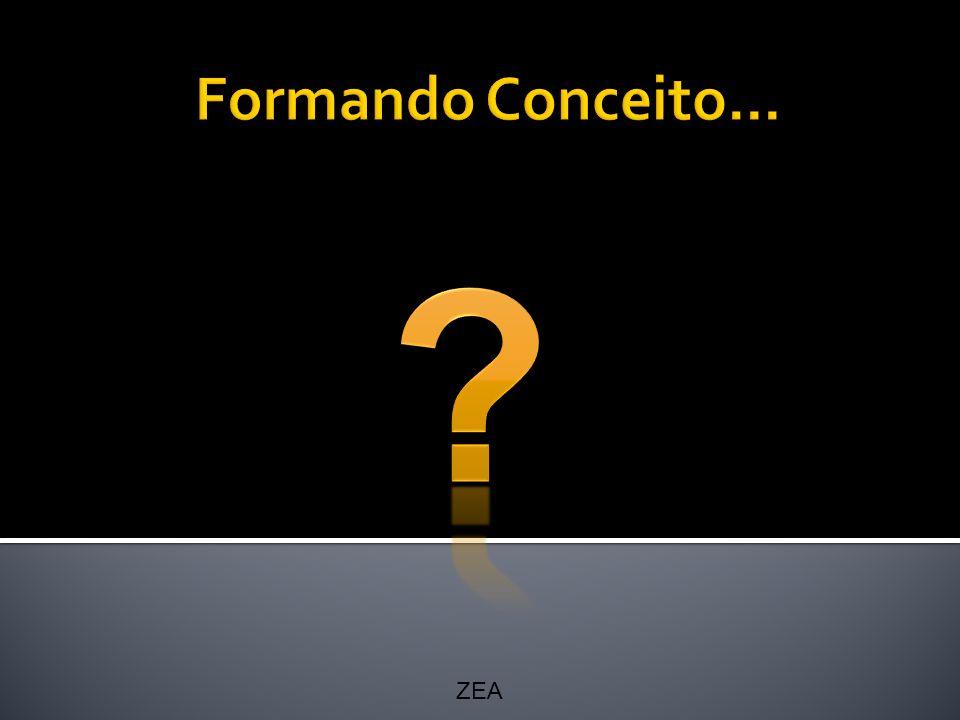 Formando Conceito... ZEA