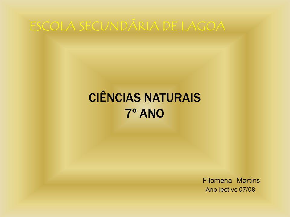 ESCOLA SECUNDÁRIA DE LAGOA