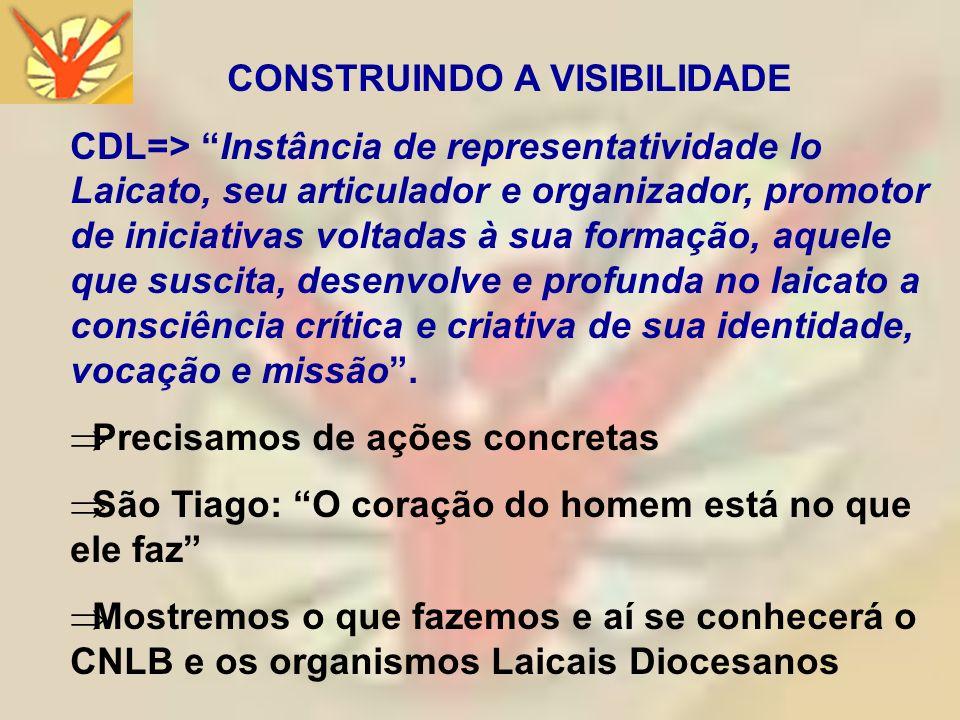 CONSTRUINDO A VISIBILIDADE