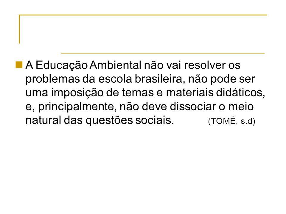 A Educação Ambiental não vai resolver os problemas da escola brasileira, não pode ser uma imposição de temas e materiais didáticos, e, principalmente, não deve dissociar o meio natural das questões sociais.