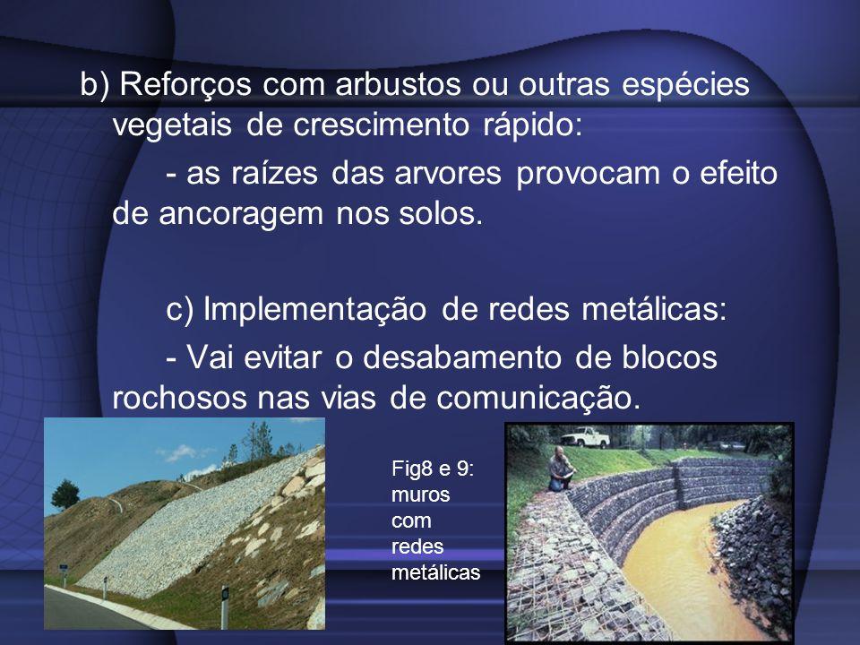 - as raízes das arvores provocam o efeito de ancoragem nos solos.