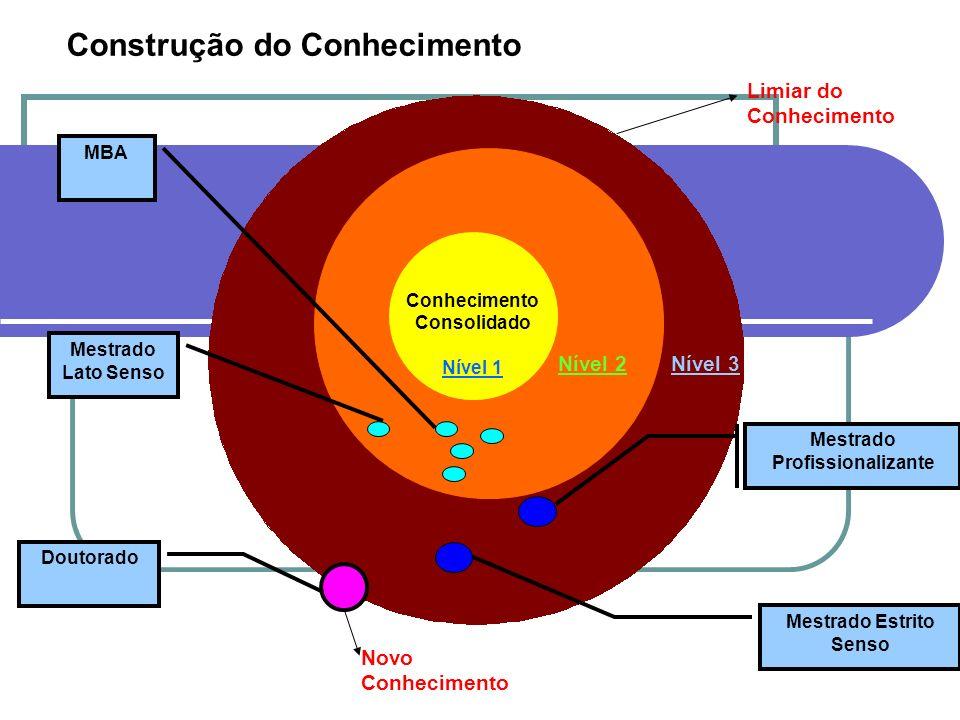 Conhecimento Consolidado Mestrado Profissionalizante