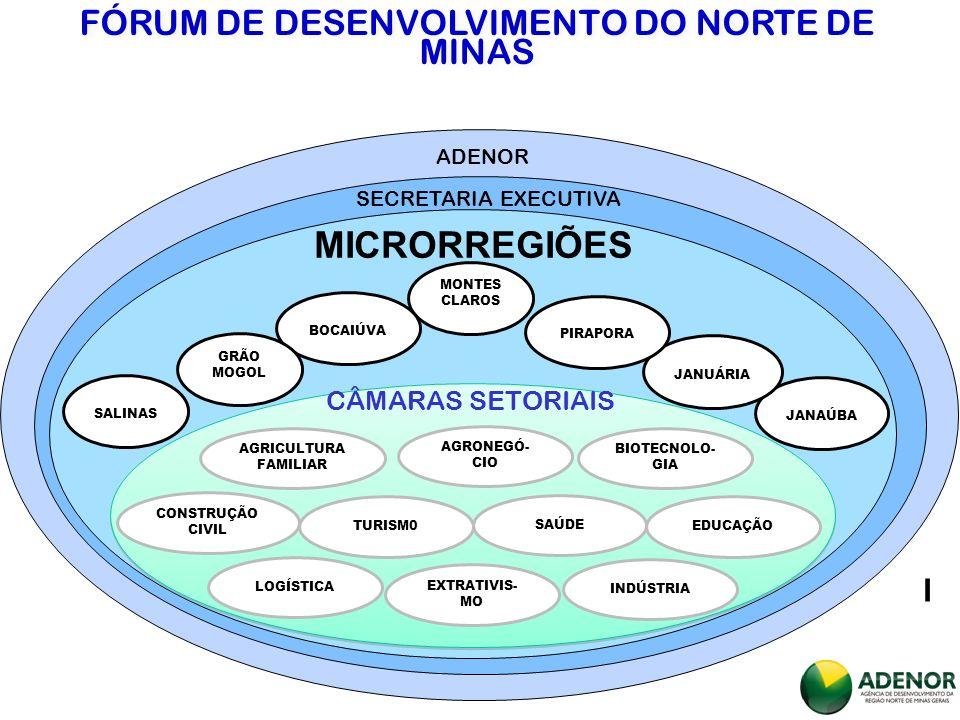 FÓRUM DE DESENVOLVIMENTO DO NORTE DE MINAS