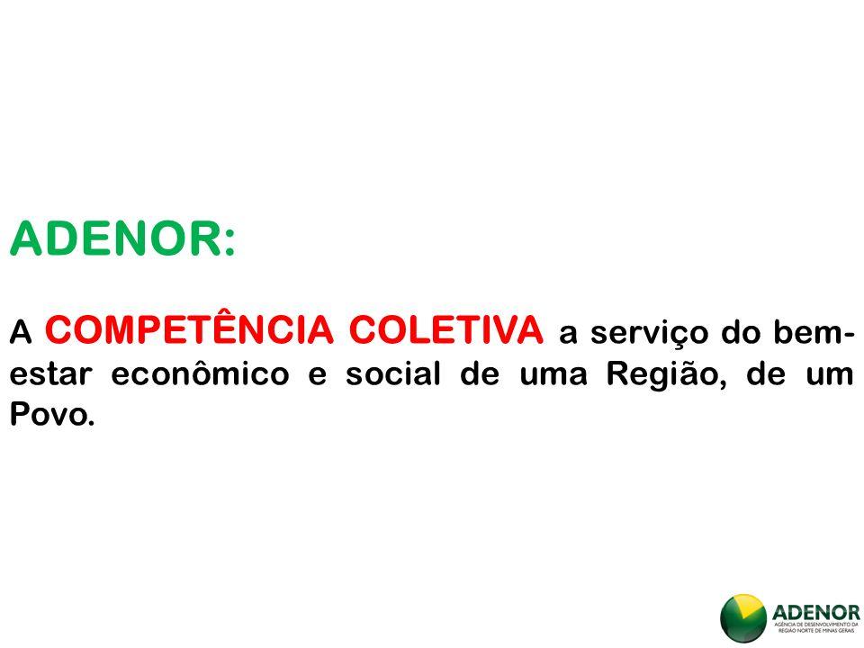 ADENOR: A COMPETÊNCIA COLETIVA a serviço do bem-estar econômico e social de uma Região, de um Povo.