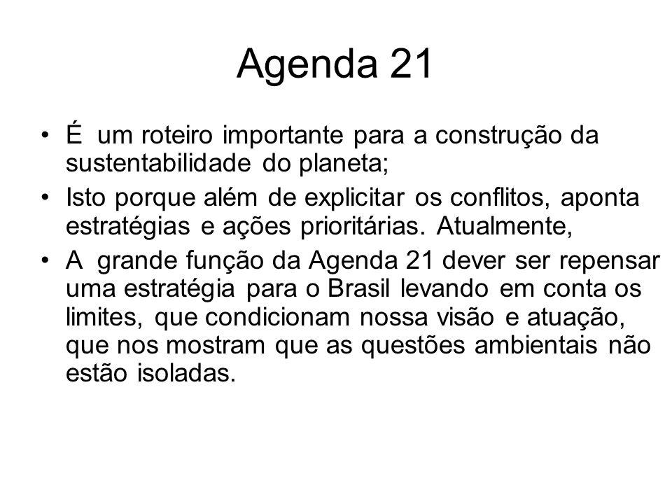 Agenda 21 É um roteiro importante para a construção da sustentabilidade do planeta;