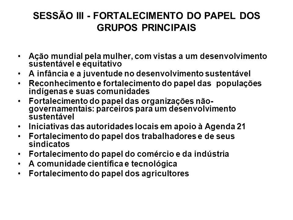 SESSÃO III - FORTALECIMENTO DO PAPEL DOS GRUPOS PRINCIPAIS
